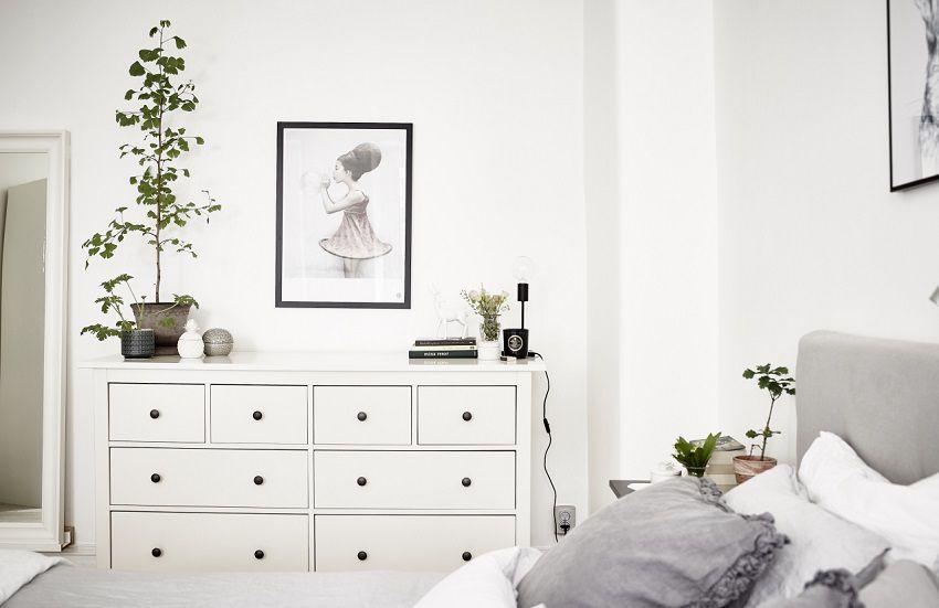 Piante e fiori in camera da letto ecco perch s house mag - Piante in camera ...